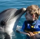 Dolphin Therapy of Kirill 2011