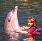 Dolphin Therapy expectations exceeded