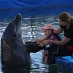 Tips readers make dolphin therapy in Turkey possible for young Liam