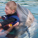 Marvin has advanced enormously through dolphin therapy