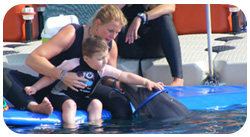 barbara helping a child playing with a dolphin