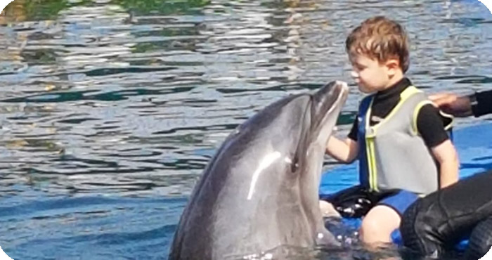 Dolphin Therapy for Lutz: Kissing Dolphin