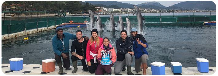 Delfintherapie Request Onmega